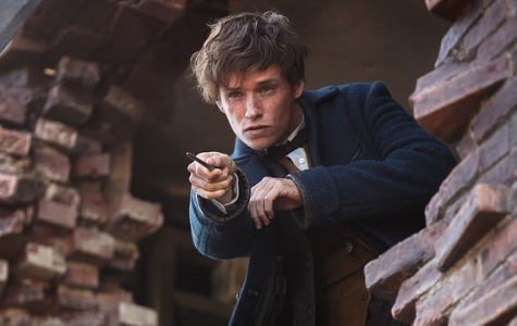 How Does Fantastic Beasts Stack Up According to Fans?