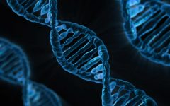 The Dilemma of Gene Editing