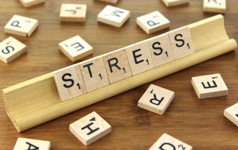 How Much Stress Are We Really Experiencing?