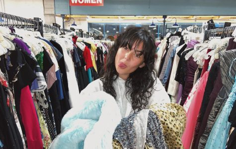 Our EIC, Delaney, puts her own advice to the test with a shopping spree.