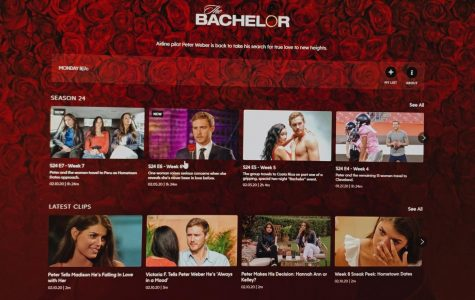 My Thoughts on Bachelor Nation