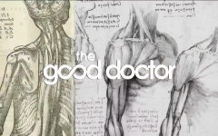 The Good Doctor: A Review